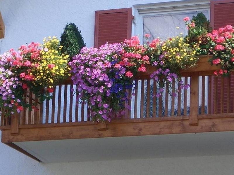 Навесные кашпо с цветами на балконе: фото идеи.